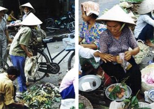 tour vietnam markets on vacation